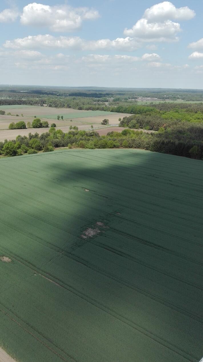 Luftbild Blick Vom Höpen In Richtung Wesseloh Web
