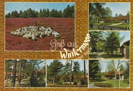 Ansichtskarte Wintermoor um 1975, Reher Verlag Nr 580