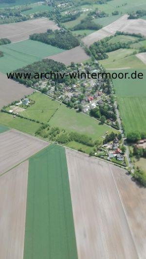 Luftbild Kiefernbusch Unscharf Im Mai 2017 Web
