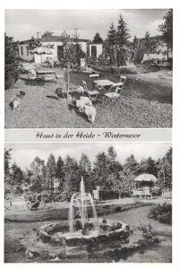 """Ansichtskarte """"Haus in der Heide"""" in Wintermoor a.d.Ch., H. Oestereich - Verlag Rud. Reher Hamburg, vor/um 1956"""