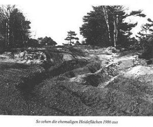 So sehen die ehemalige Heideflächen 1986 aus - Bild aus dem Buch von Walter Peters