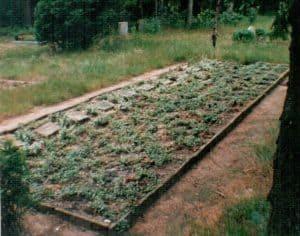 Massengrab für Alliierte Soldaten, die in und um Wintermoor während des Zweiten Weltkriegs gestorben sind - Friedhof Wintermoor 1996