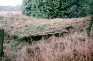Erhaltene Fundamentplatte des Munitionslagers in Kamperheide (1999)
