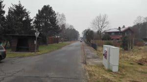 Blick in den Kiefernbusch vom Ehrhorner Heuweg aus, Januar 2017