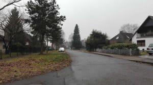 Blick in den Kiefernbusch (zweite Kehre) im Januar 2017