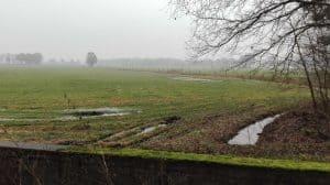 Etwas weiter nördlich überquert der Wintermoorer Kirchweg einen Entwässerungsgraben und bietet einen Blick auf die Wintermoorer Feuchtwiesen.