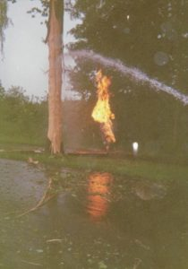 Baum mit Blitzschaden und brennenden Erdgas (Foto: Feuerwehr Wintermoor-Ehrhorn)