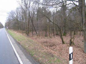 Bundesstraße alte Zufahrt nach Kamperheide 2017