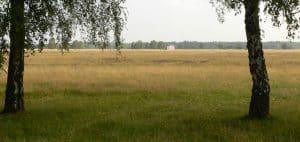 Camp Reinsehlen 2011, Foto Axel Hindemith, Lizenz CC-by-sa-3.0 de