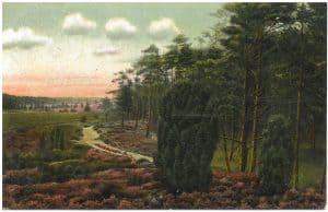 Kolorierte Ansichtskarte vom Weg Wintermoor nach Wilsede vor 1911