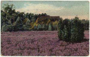 handcolorierte Ansichtskarte um 1910 mit einem Heidehof in Wintermoor Schneverdingen