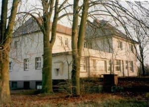 Drei Birken vor 1999 I