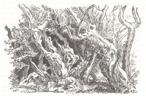 Unheimliches Gebüsch - Bild aus Plauderei aus einem Heidedorf von Frido Witte