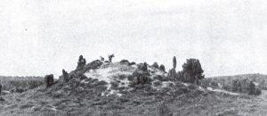 Brammelbult - abgetragenes Hügelgrab in Reinsehlen