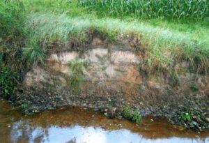 Wümme mit Geländeprofil 2012 ungefähr bei 53.184958, 9.803069, Zwischen Graben A und Ottermoor